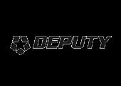 Deputy Partner